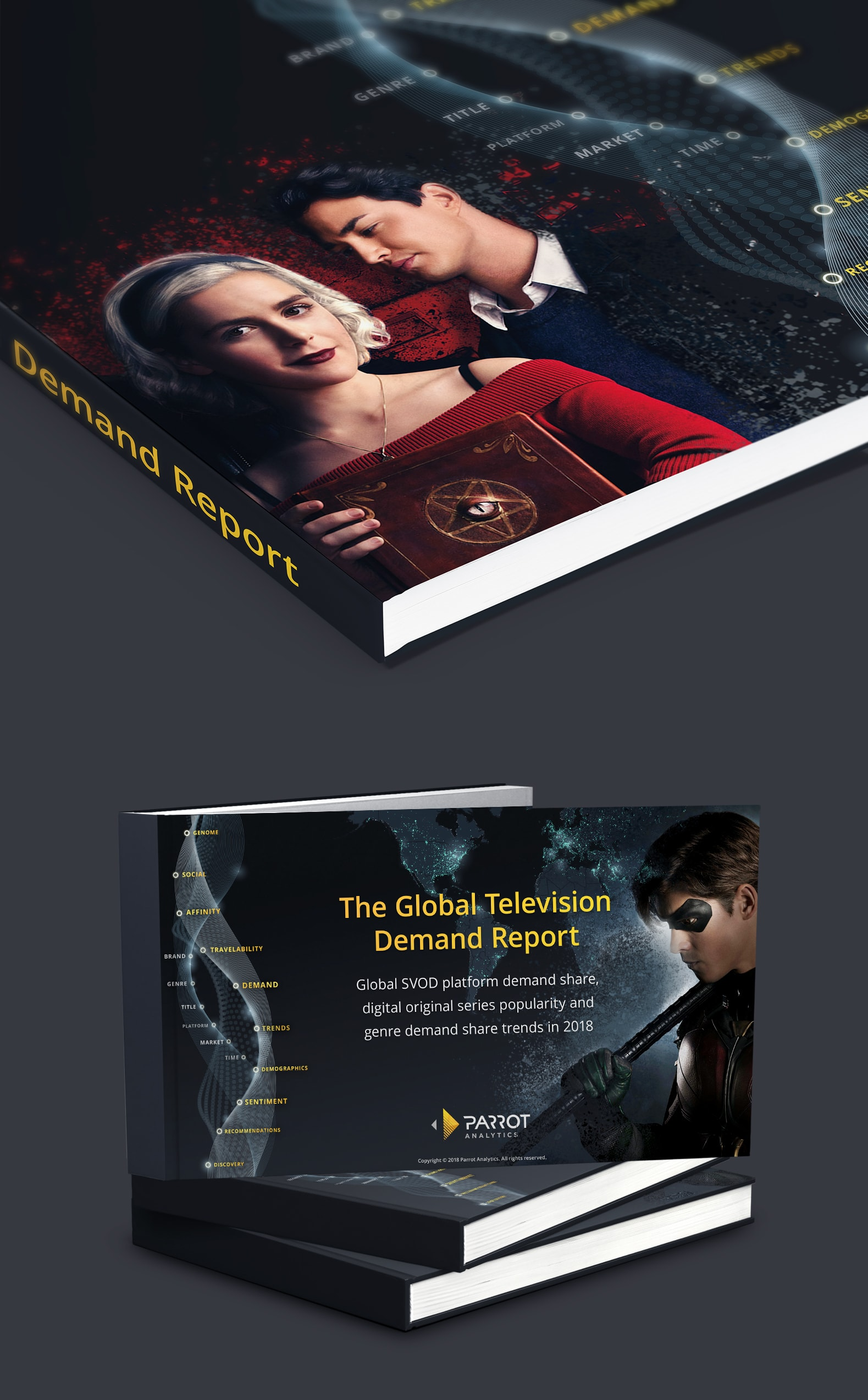 The Global Television Demand Report: Full Year 2018